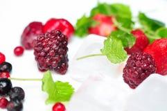 Feche acima da fruta misturada congelada Fotografia de Stock
