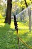 Feche acima da grama molhando e das árvores do abastecimento de água automático Fotografia de Stock Royalty Free