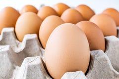 Feche acima da imagem do cru ovos na bandeja do ovo Fotografia de Stock