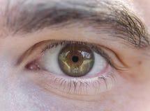 Feche acima da imagem dos olhos marrons do homem novo Fotografia de Stock Royalty Free