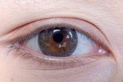 Feche acima da lente de contato bonita do olho da mulher foto de stock