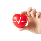 Feche acima da mão com cardiograma no coração vermelho Imagem de Stock