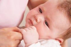 Feche acima da mão das matrizes da terra arrendada do bebé imagens de stock royalty free