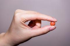 feche acima da mão redonda do comprimido Foto de Stock
