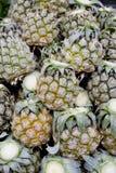 Feche acima da mini textura do fundo do abacaxi - pineappl pequeno do tamanho Fotos de Stock