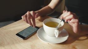 Feche acima da mulher de negócio que senta-se no chá bebendo do café video estoque