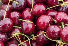 Feche acima da obscuridade - cerejas vermelhas de Lepin imagens de stock royalty free