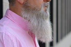 Feche acima da opinião lateral um homem cinzento-de cabelo farpado imagem de stock royalty free