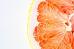 Feche acima da opinião uma laranja do cara-cara imagem de stock