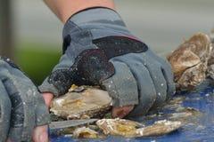 Feche acima da ostra que está sendo preparada Imagem de Stock Royalty Free