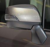 Feche acima da parte anterior do espelho marrom da vista lateral Fotografia de Stock Royalty Free