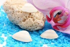 Pedra coral branca imagens de stock royalty free