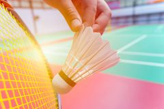 Feche acima da peteca do badminton do saque da posse da mão Fotos de Stock