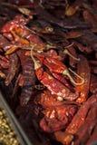 Feche acima da pimenta encarnado de Ddy Foto de Stock Royalty Free