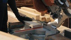 Feche acima da prancha de madeira dos cortes de máquina do corte O trabalhador corta placas de madeira vídeos de arquivo
