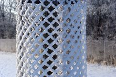 Feche acima da proteção da árvore Imagem de Stock