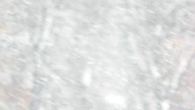 Feche acima da queda de inclinação da neve video estoque