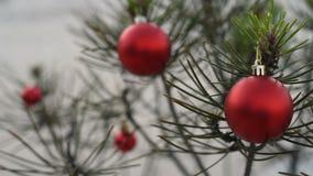 Feche acima da quinquilharia do pinheiro do Natal no fundo da neve vídeos de arquivo