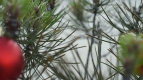 Feche acima da quinquilharia exterior do pinheiro do Natal vídeos de arquivo