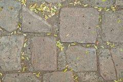 Feche acima da rua velha do tijolo Foto de Stock Royalty Free