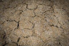 Feche acima da terra rachada, textura do solo seco Imagem de Stock Royalty Free