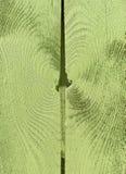 Feche acima da textura de madeira pintada verde Fotos de Stock