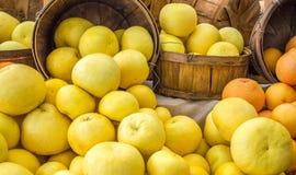 Feche acima da toranja e das laranjas coloridas brilhantes em umas cubetas de madeira Imagem de Stock