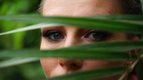 Feche acima da vista dos olhos bonitos da jovem mulher atrás da folha de palmeira filme