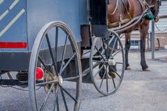 Feche acima da vista traseira da roda do carrinho de Amish com um cavalo dos pés estacionado em uma exploração agrícola fotografia de stock