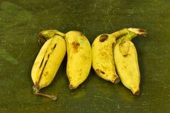 Feche acima das bananas na textura de madeira velha, banana orgânica Imagem de Stock