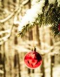 Feche acima das bolas vermelhas do Natal na floresta do inverno fotografia de stock