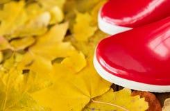 Feche acima das botas de borracha vermelhas nas folhas de outono fotos de stock royalty free