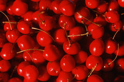 Feche acima das cerejas maduras Imagens de Stock Royalty Free