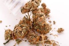 Feche acima das folhas secadas da marijuana na tabela Fotos de Stock