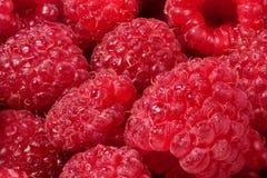 Feche acima das framboesas maduras vermelhas com alguma água nelas fotografia de stock royalty free