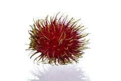 Feche acima das frutas do Rambutan Fotos de Stock Royalty Free