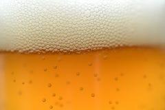 Feche acima das gotas de uma pinta gelado da cerveja Imagens de Stock Royalty Free