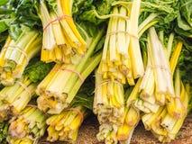 Feche acima das hastes coloridas do aipo com folhas verdes Imagem de Stock