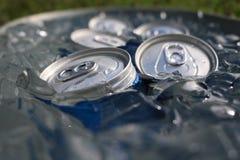 Feche acima das latas no gelo Fotografia de Stock