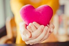 Feche acima das mãos asiáticas que guardam um coração violeta imagem de stock royalty free
