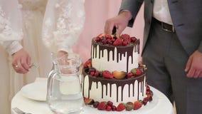 Feche acima das mãos que cortam o bolo de casamento no banquete de casamento filme