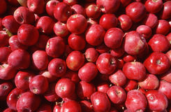Feche acima das maçãs vermelhas Imagens de Stock