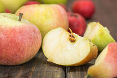 Feche acima das maçãs selvagens Fotos de Stock Royalty Free