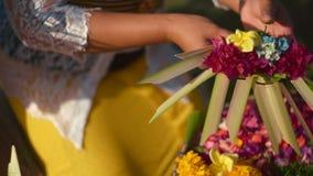 Feche acima das mulheres que fazem ofertas do Balinese do sari do canang video estoque