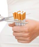 Feche acima das tesouras que cortam muitos cigarros Fotografia de Stock Royalty Free
