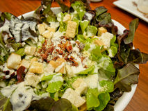 Feche acima de Caesar Salad Imagem de Stock