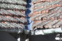 Feche acima de Lichen Covered Roof And Gutter imagens de stock royalty free