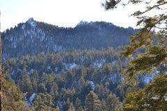 Feche acima de mountan coberto de neve Fotos de Stock