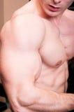 Feche acima de um braço viril forte do construtor de corpo Imagens de Stock