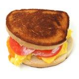 Feche acima de um sanduíche Scrambled do ovo e do queijo Imagens de Stock Royalty Free